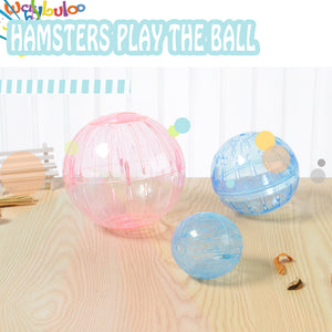 2018  transparent Multi-size Hamster & Guinea pig Ball