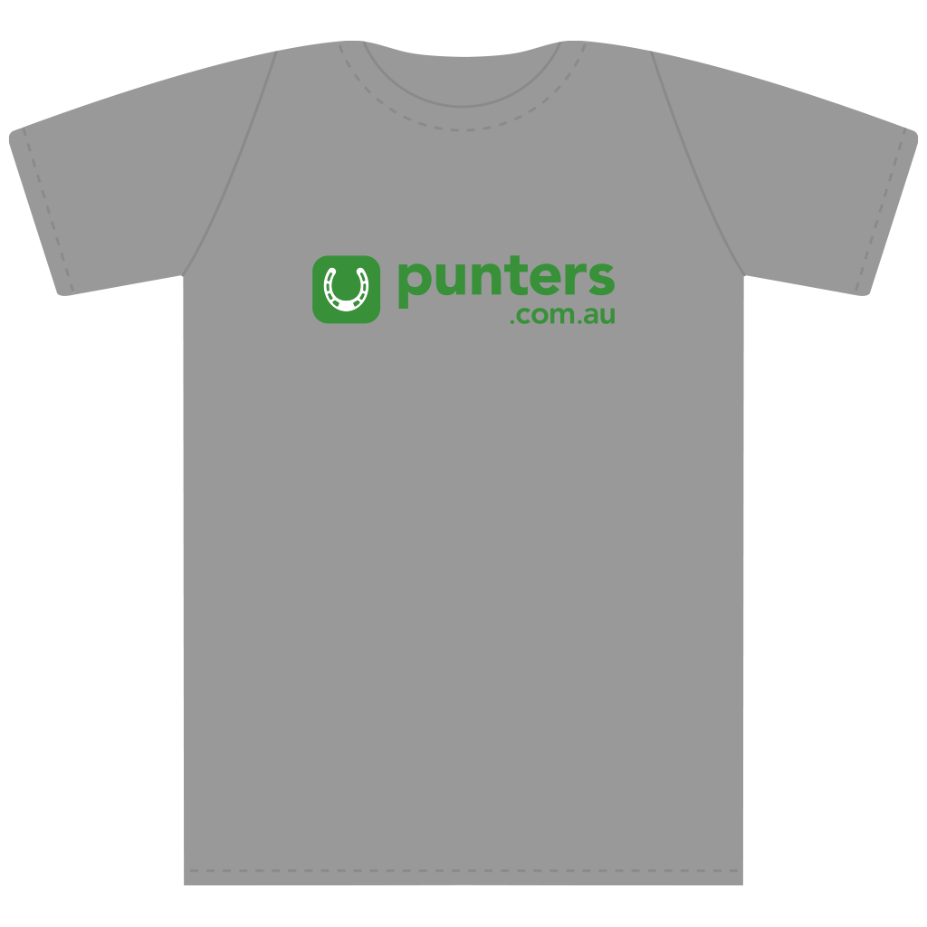 Punters Logo Short Sleeved T-Shirt - Grey Marle