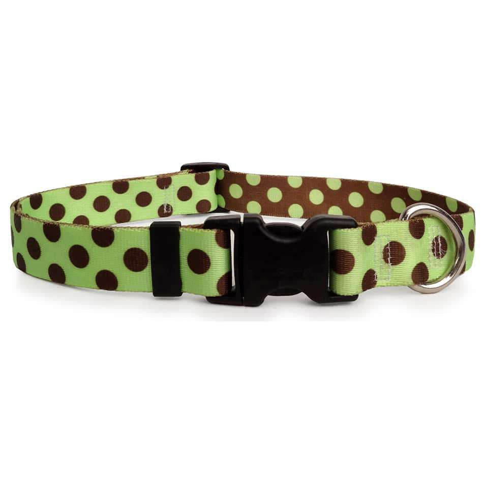 Lime with Brown Polka Dots Dog Collar- adjustable or martingale