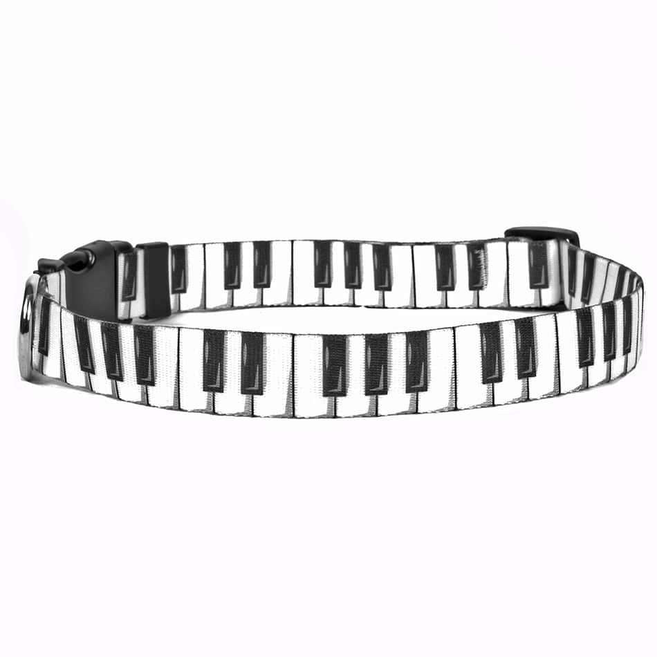 Piano Keys Dog Collar