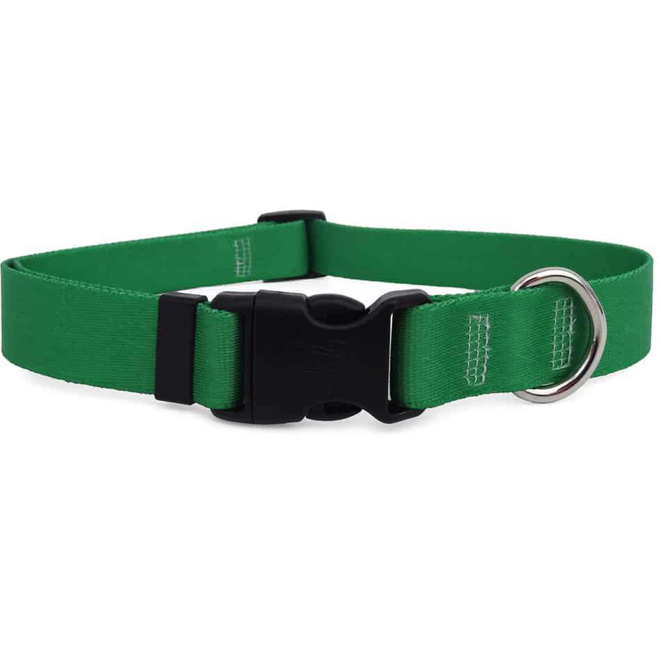 Solid Kelly Green Dog Collar- adjustable or martingale
