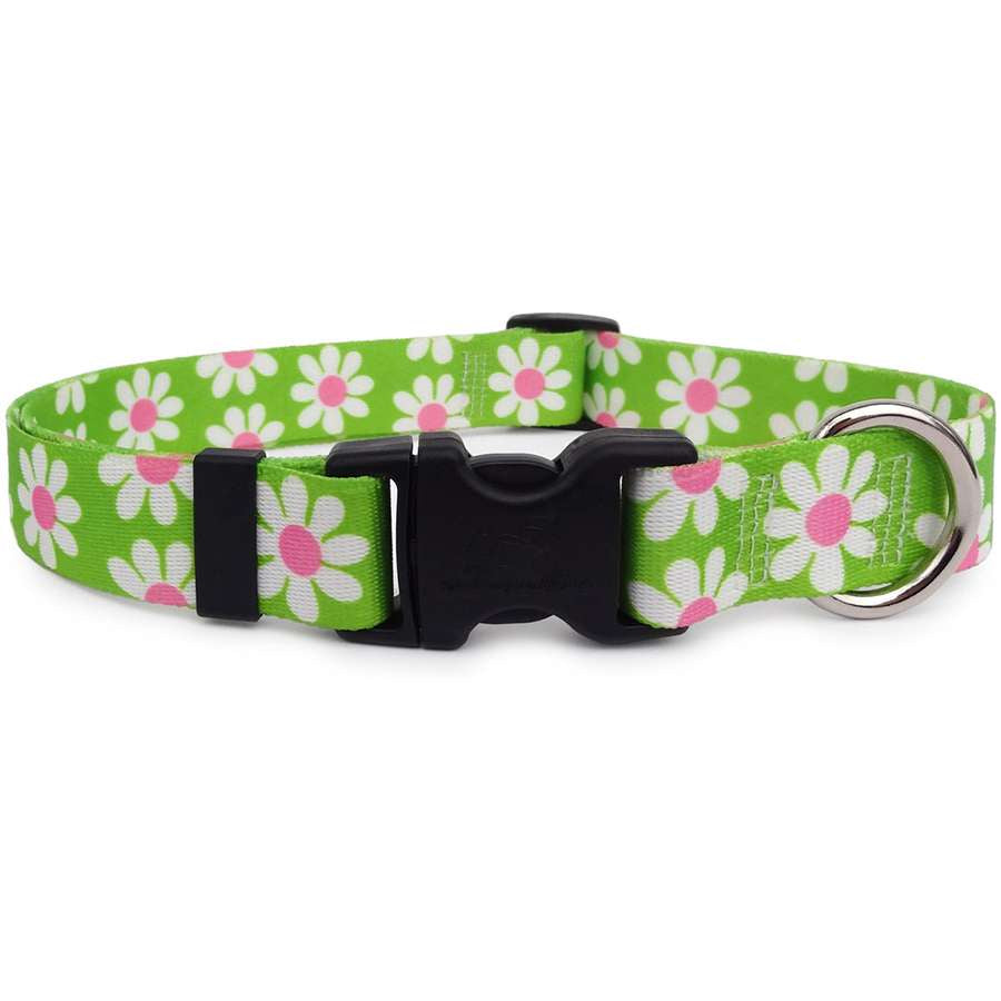 Green Daisy Dog Collar- USA made