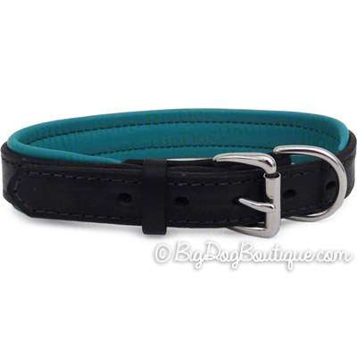 Padded Leather Dog Collar- black with turquoise padding