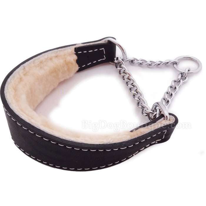 Wide Leather Martingale Dog Collar with Sheepskin Lining