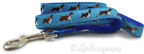 English Springer Spaniel Dog Collar or Leash