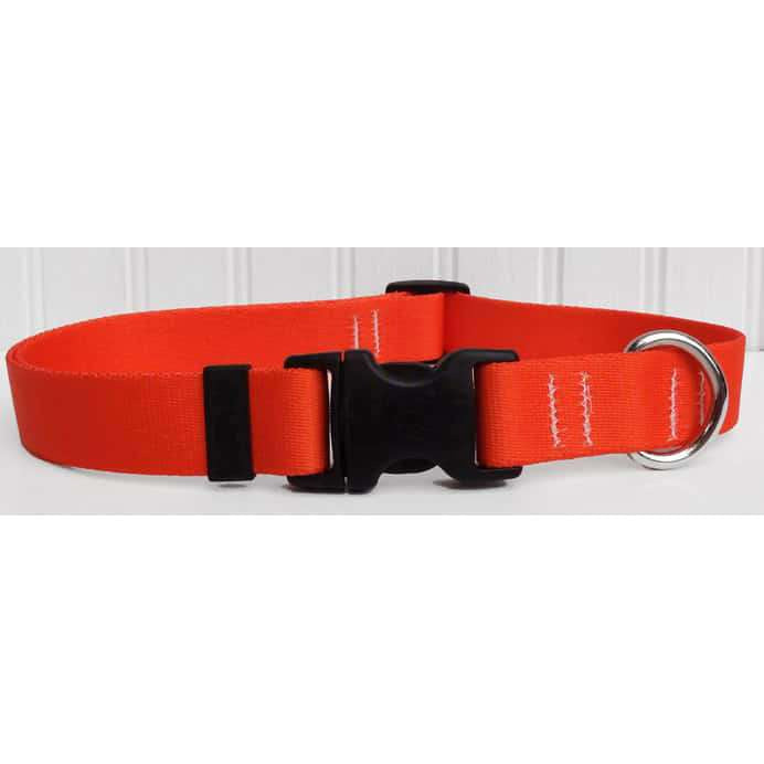 Orange Adjustable Dog Collar