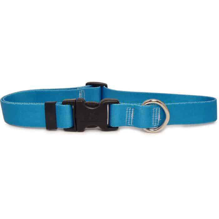Solid Teal Dog Collar- adjustable or martingale