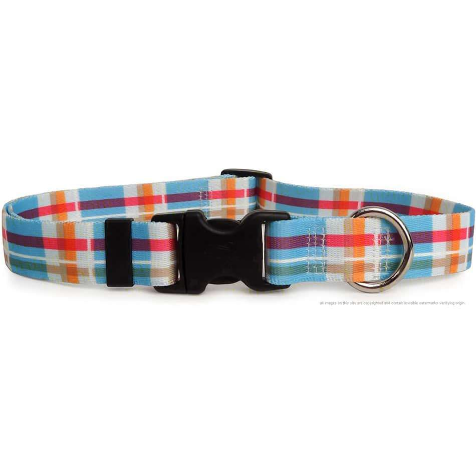 Blue Madras Plaid Dog Collar (adjustable or martingale)