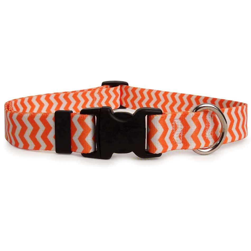 Tangerine Orange and White Chevron Dog Collar