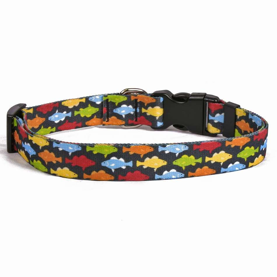 Rainbow Fish Black Dog Collar -adjustable or martingale