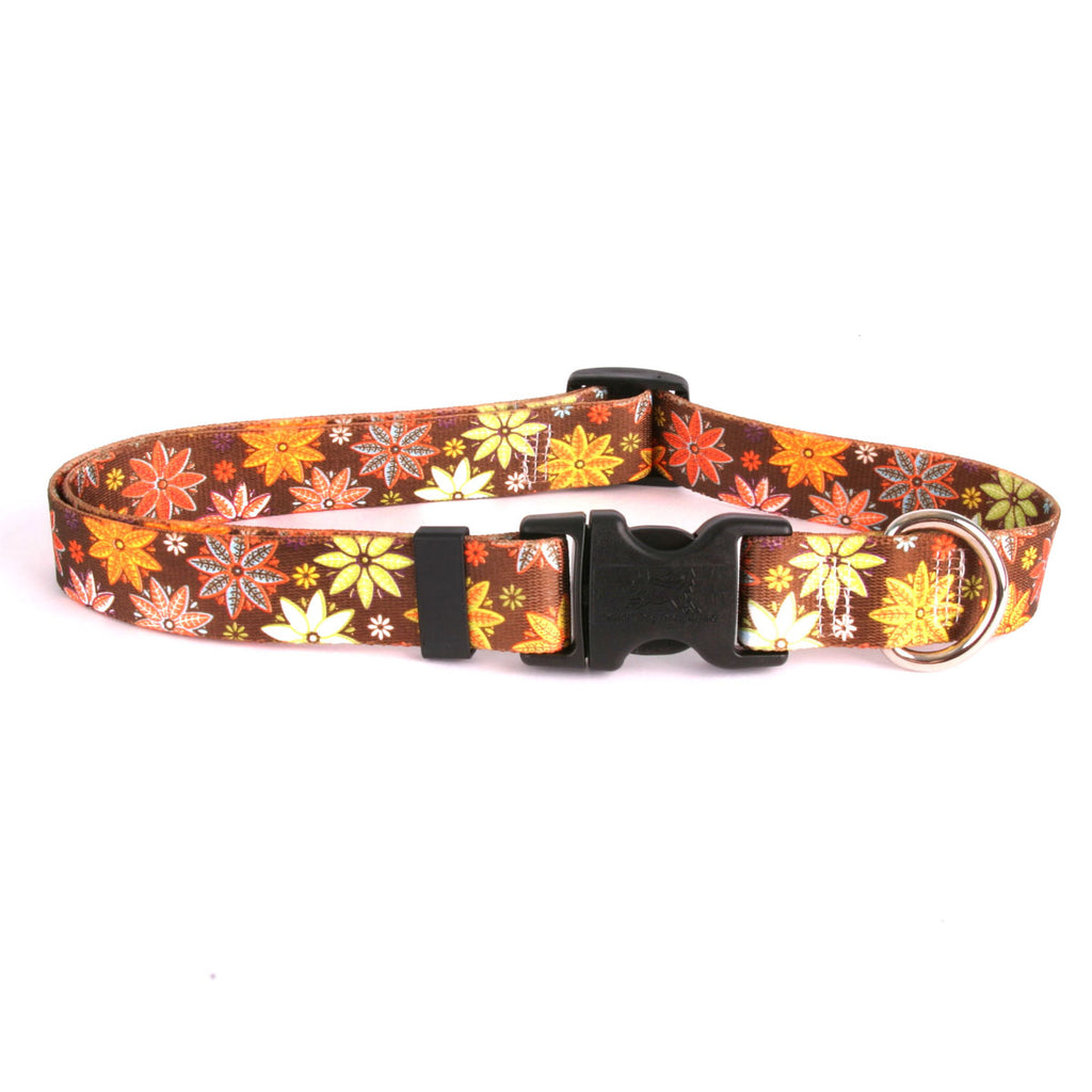 Autumn Flowers Adjustable Dog Collar
