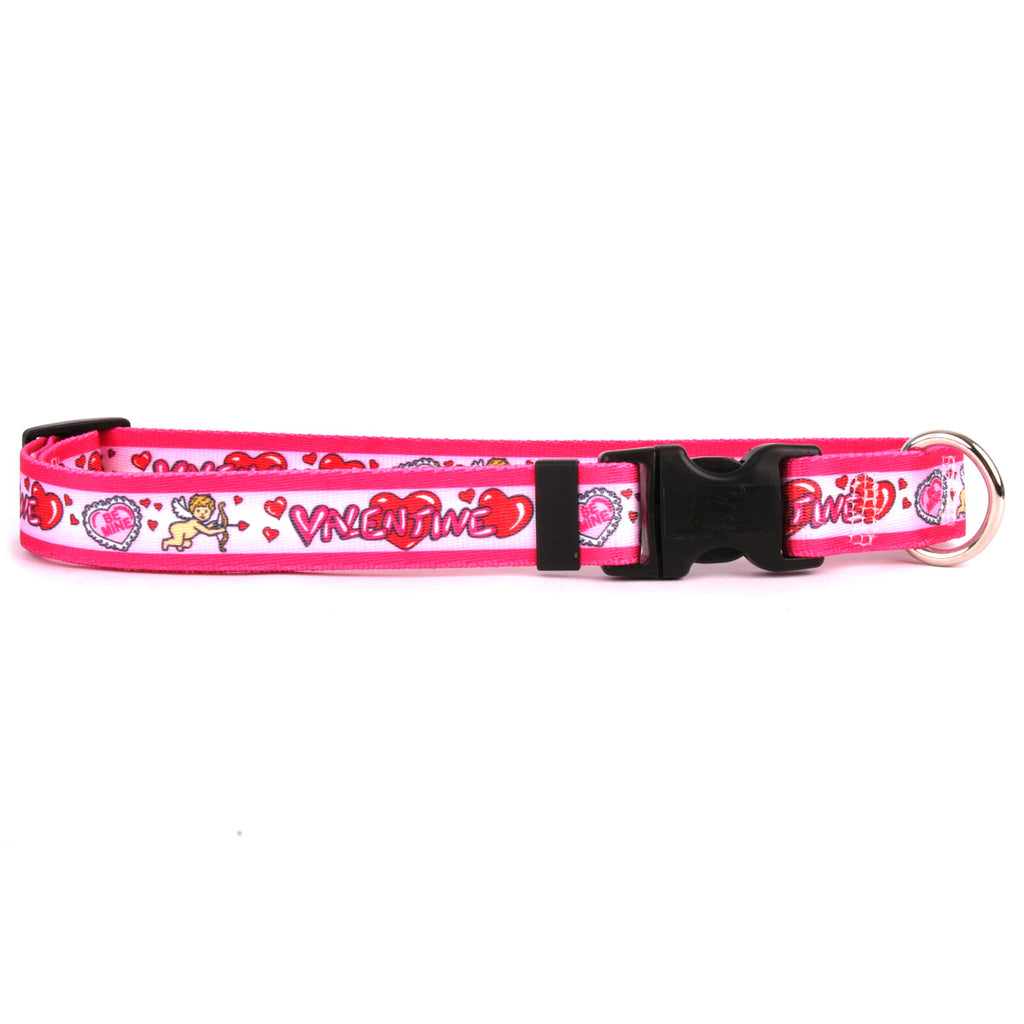 Be My Valentine Cupid Dog Collar- adjustable or martingale
