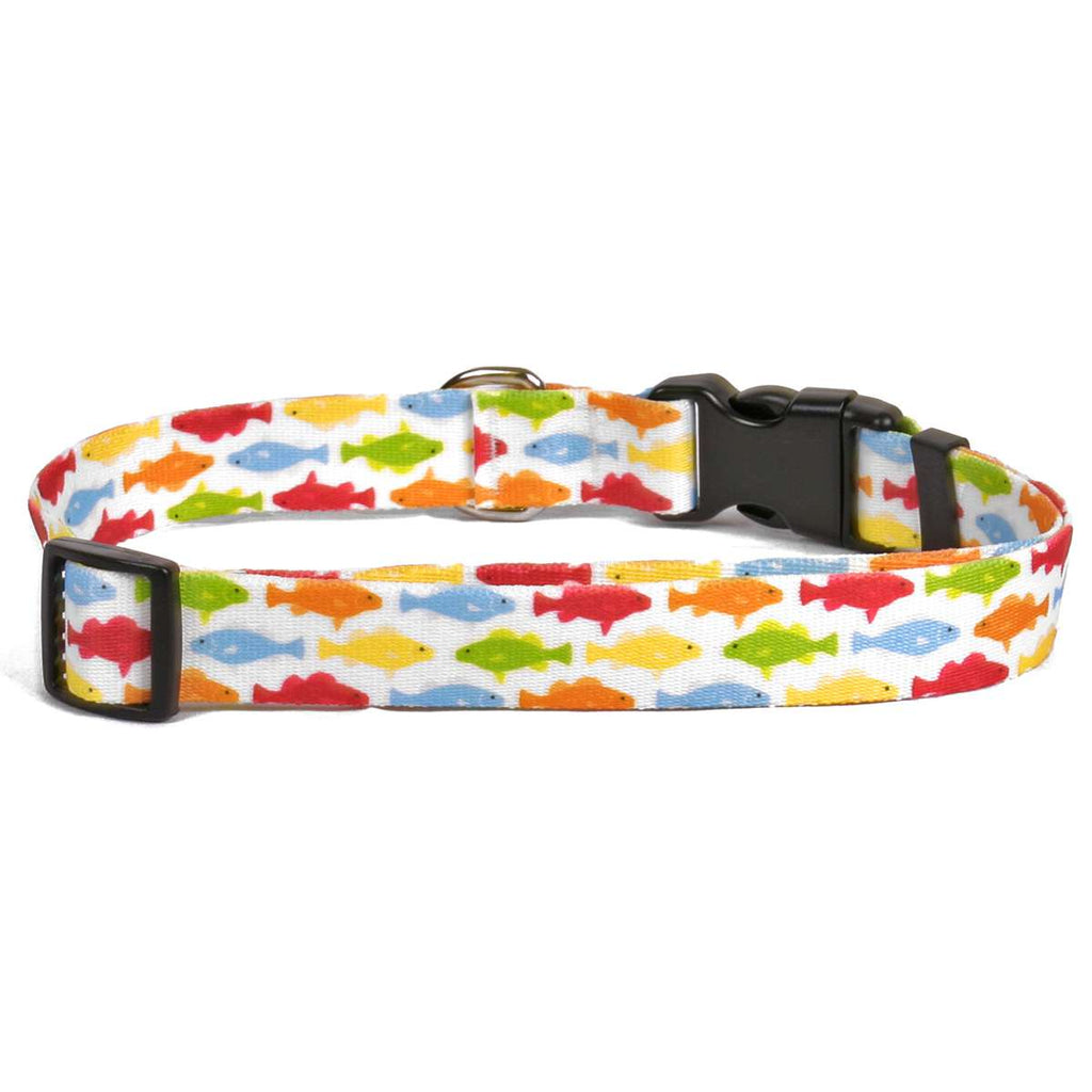 Rainbow Fish White Dog Collar -adjustable or martingale
