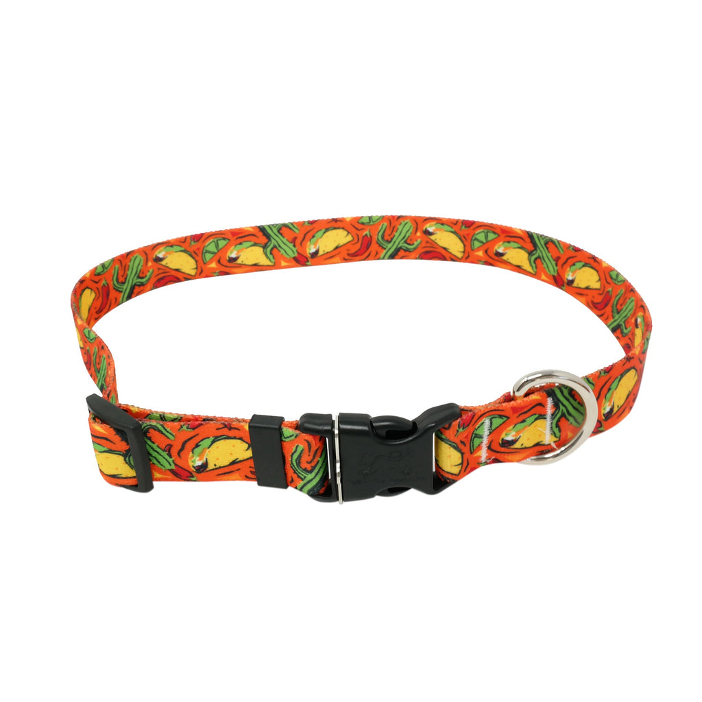Fiesta Taco Dog Collar -adjustable or martingale