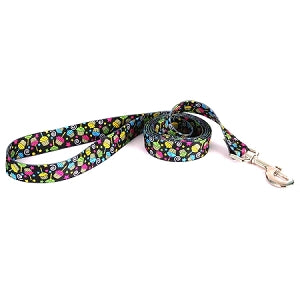 It's My Birthday - Dog Leash -