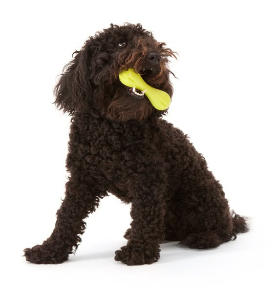 West Paw Hurley Dog Bone for tough chewers