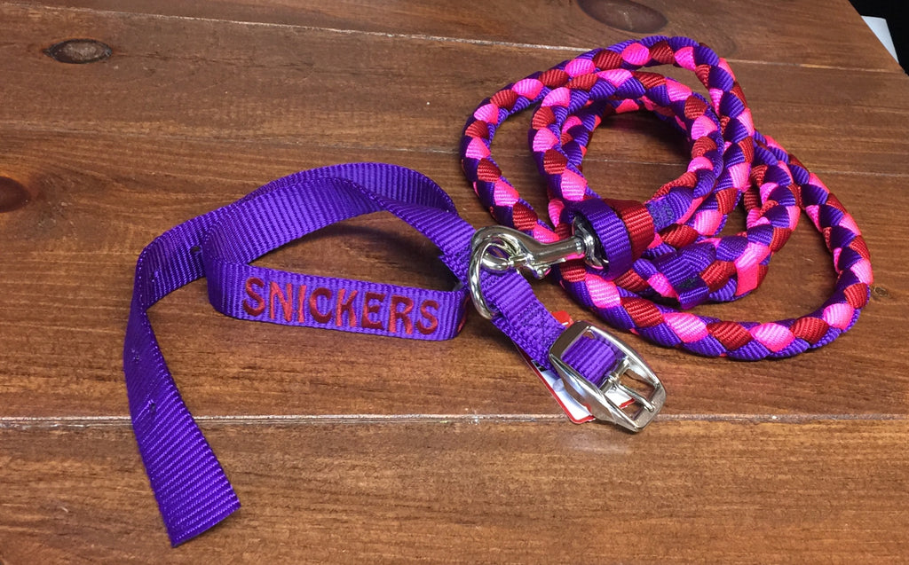 Custom Braided Nylon Dog Leash