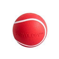 Playology Scented Squeaky Chew Ball for Dogs