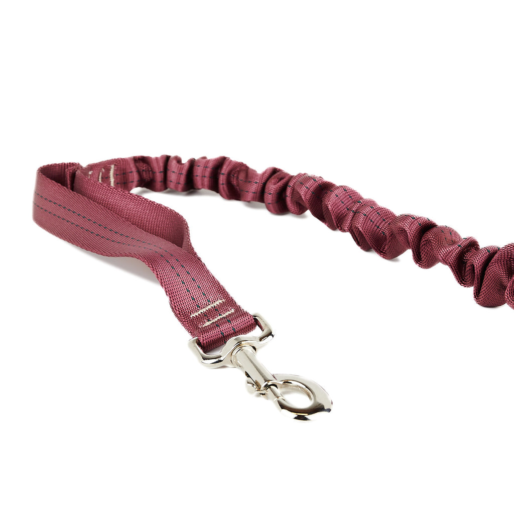 Spindrift Max Walker Stretch Bungee Dog Leash - 10 Colors