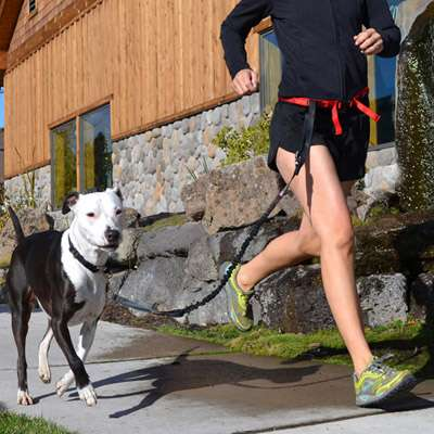 Daisy Runner- hands free dog running belt