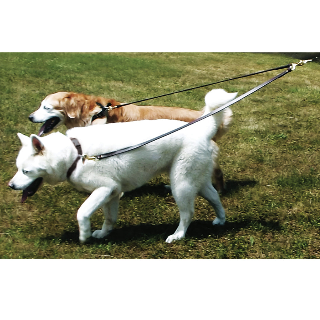 Leather 2-Dog Walker- No Tangle Double Dog Leash