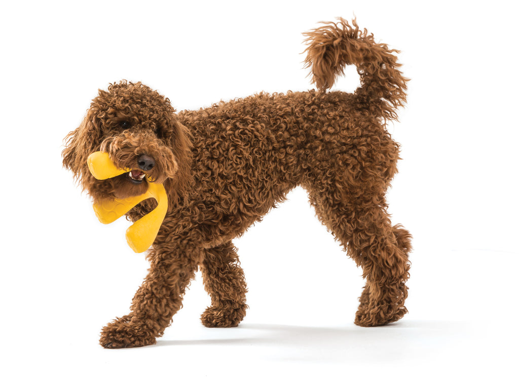 Wox Tug & Fetch Dog Toy- West Paw