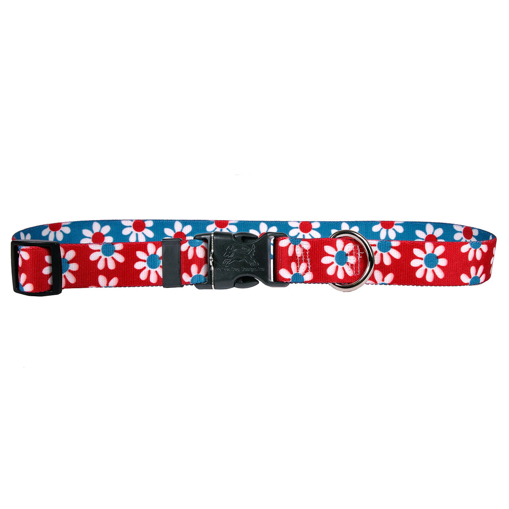 Daisy Red & Teal Dog Collar