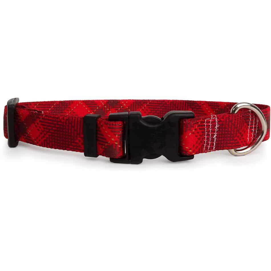 Red Kilt Dog  Collar