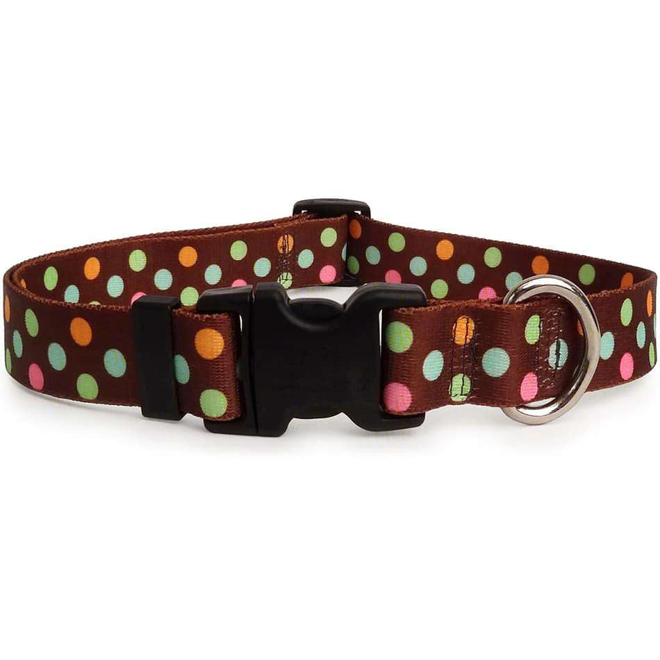 Neopolitan Polka Dot Dog Collar