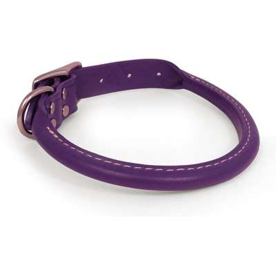 Purple Rolled Leather Dog Collar