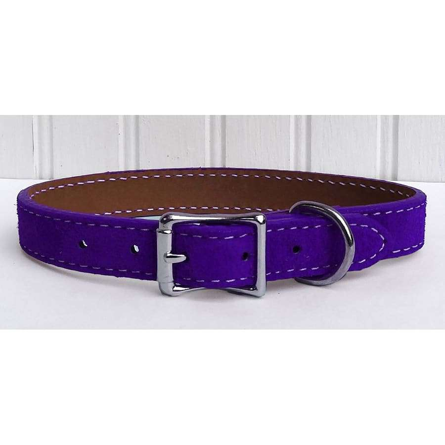 Saratoga Suede Purple Leather Collar