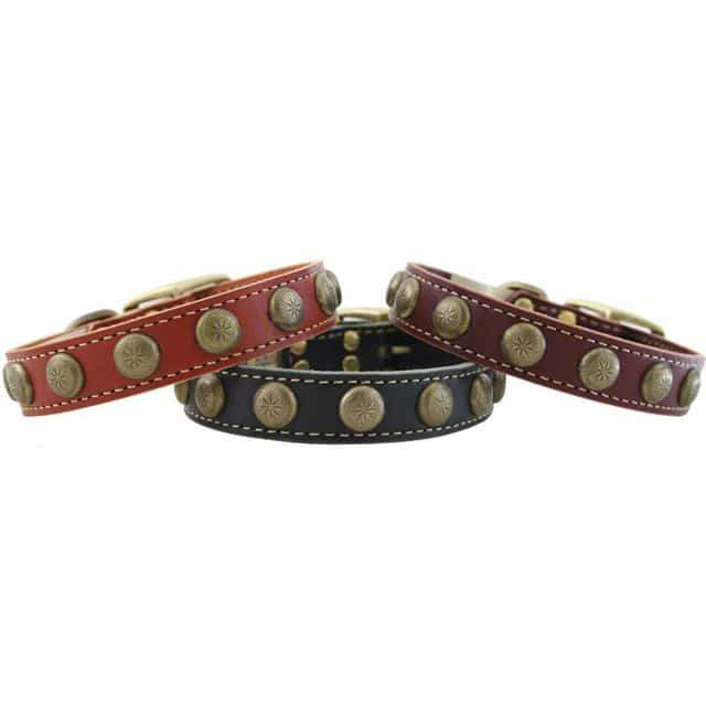 Sunburst Leather Collar