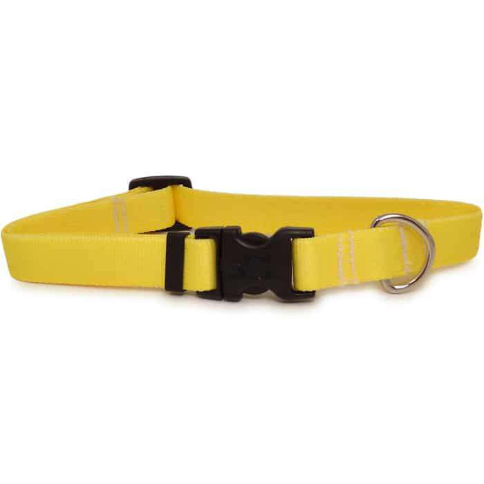 Solid Yellow Dog Collar- adjustable or martingale
