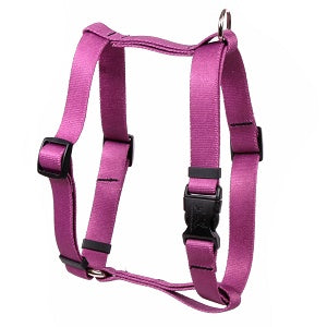 Solid Plum Roman Dog Harness