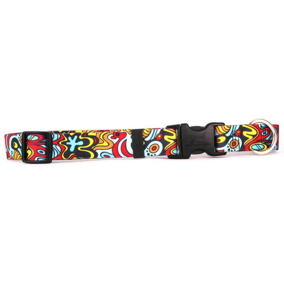 Abstract Art Dog Collar- adjustable or martingale