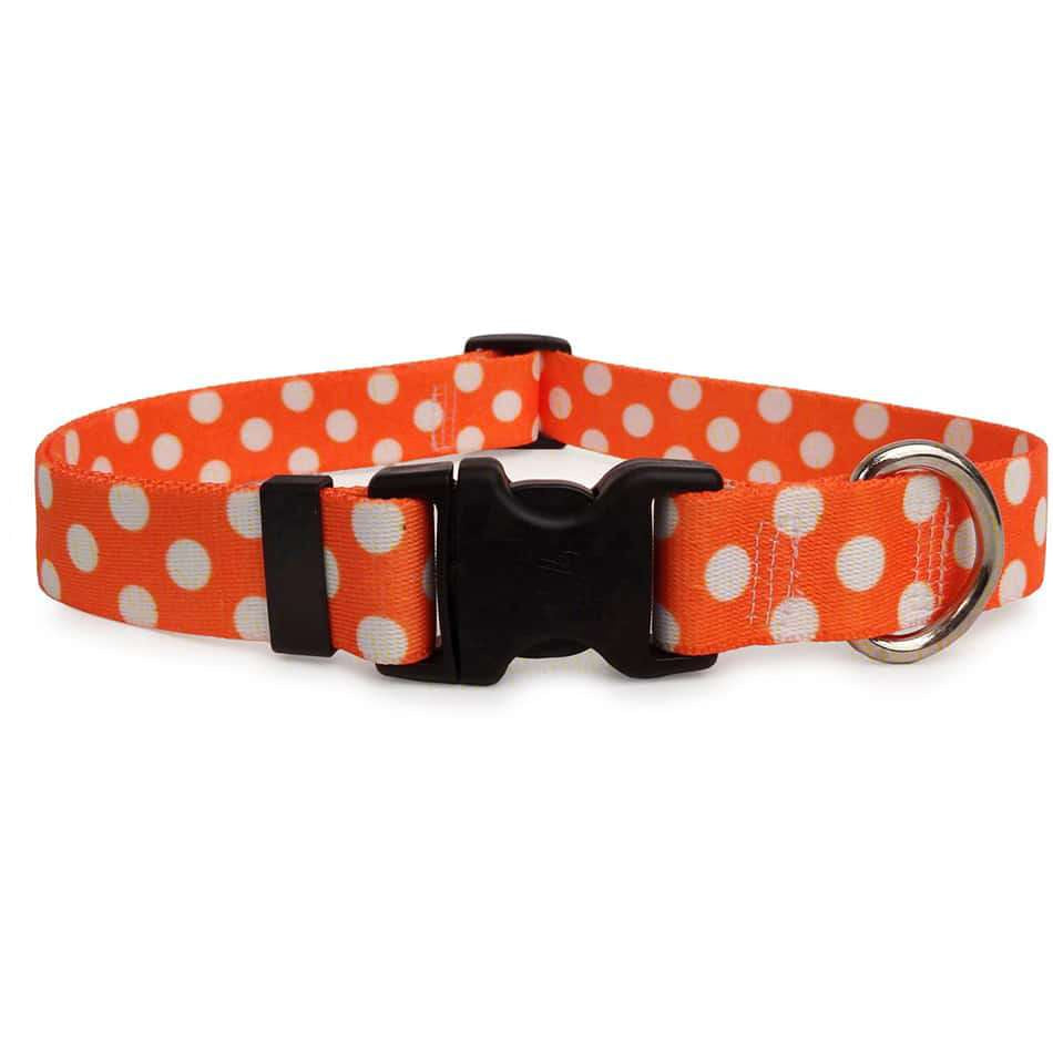 Tangerine Orange and White Polka Dot Dog Collar
