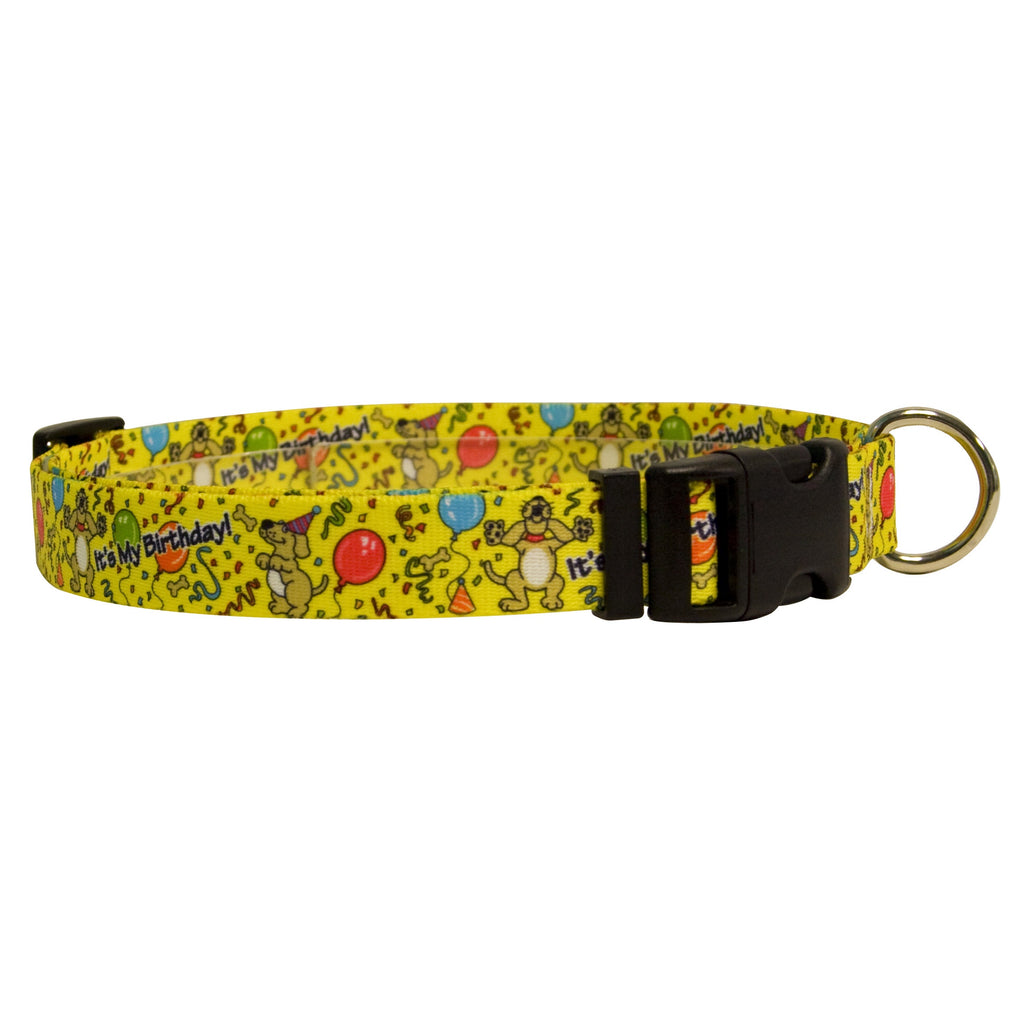 It's My Birthday - Dog Collar - Adjustable or Martingale