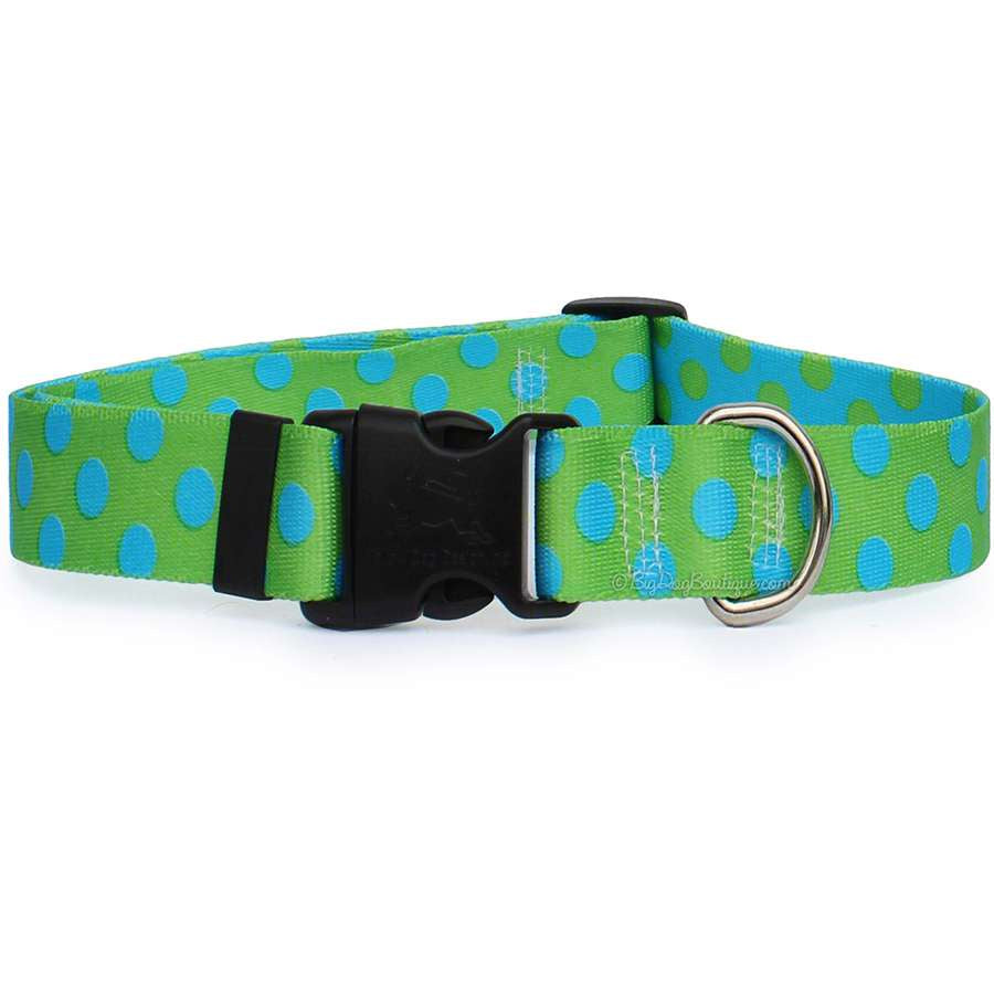 Lime with Blue Polka Dots Dog Collar