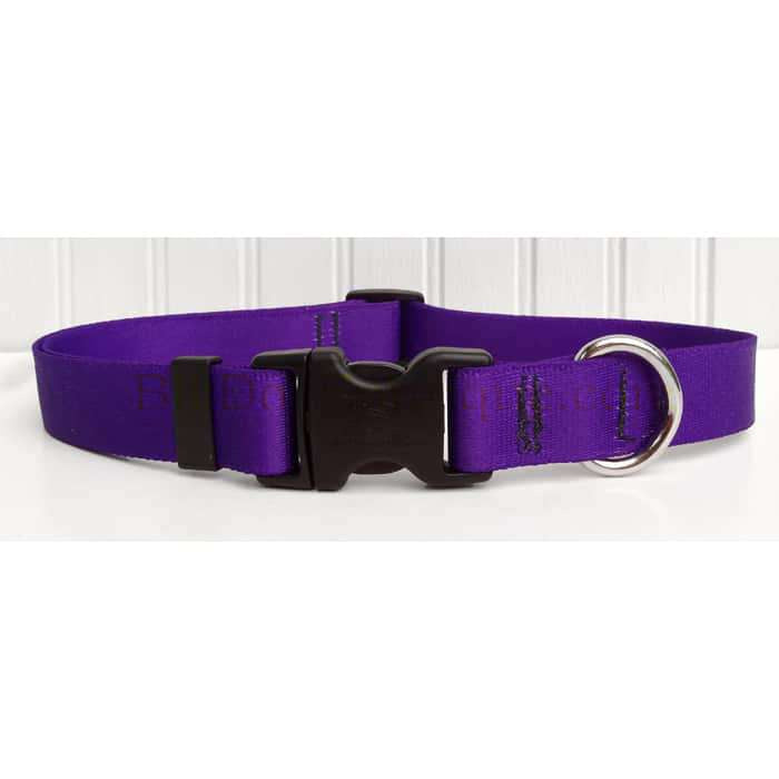 Solid Purple Dog Collar- adjustable or martingale