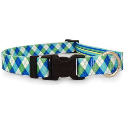 Blue and Green Argyle Dog Collar (adjustable or martingale)