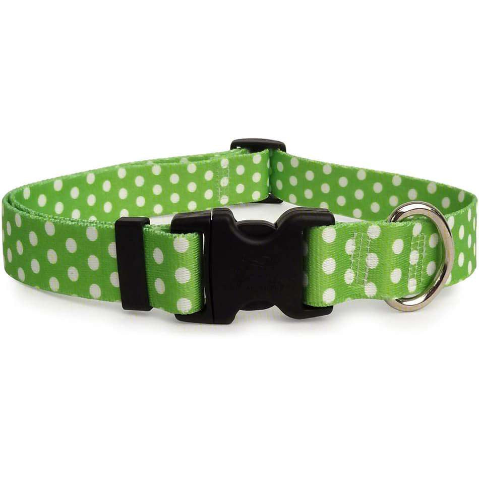 Lime with White Dots Dog Collar