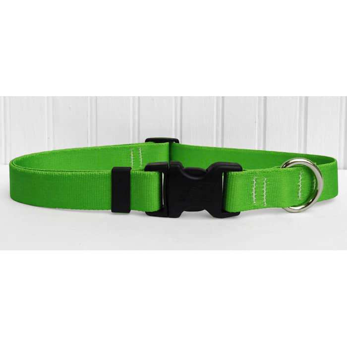 Solid Lime Green Dog Collar- adjustable or martingale
