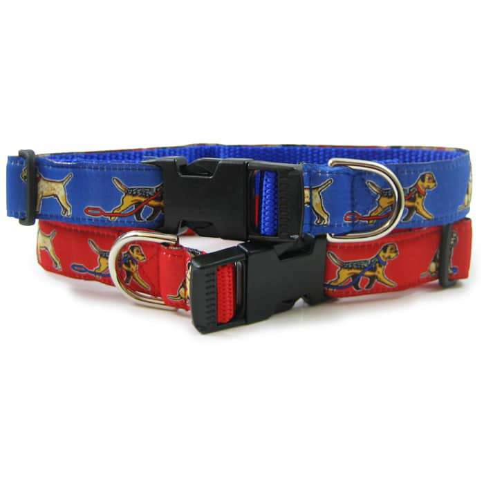 Border Terrier Breed Dog Collar or Leash