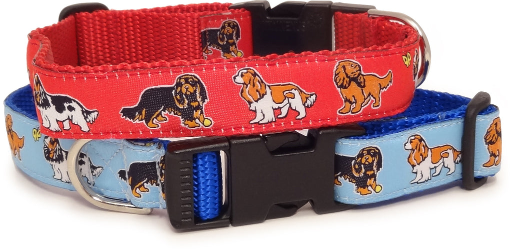Cavalier King Charles Spaniel Dog Collar or Leash