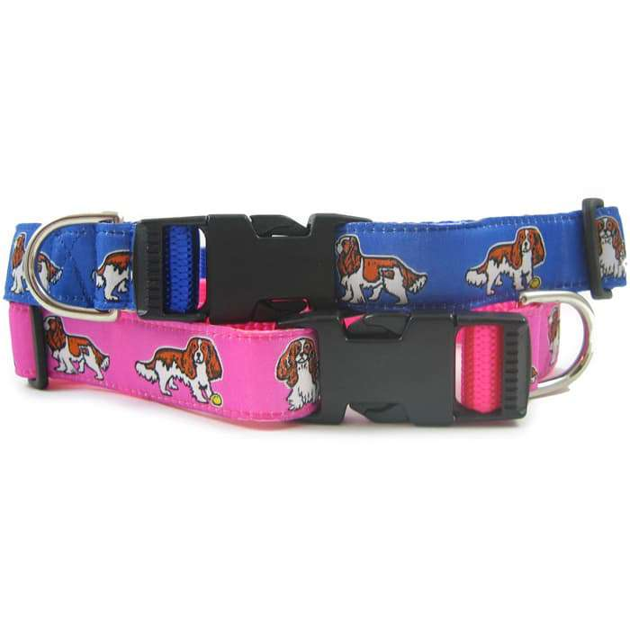 Cavalier King Charles Blenheim Dog Collar or Leash