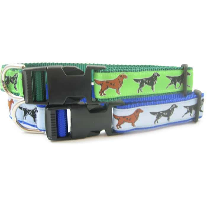 Flat Coat Retriever Breed Dog Collar or Leash