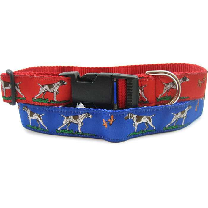 German Shorthaired Pointer Dog Collar or Leash