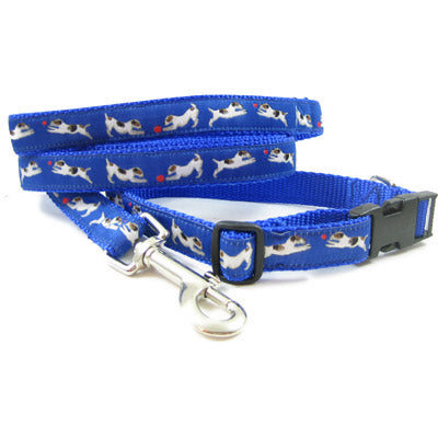 Jack Russell Terrier Dog Collar or Leash