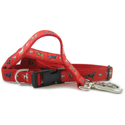 Labrador Retriever Dog Collar or Leash