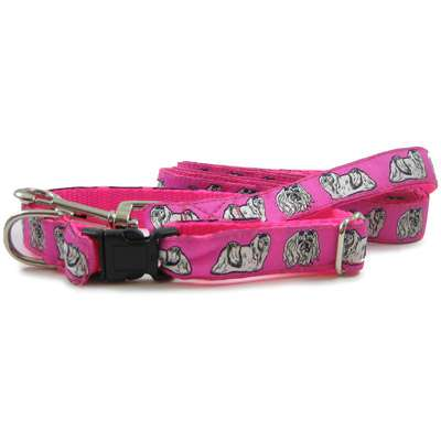 Maltese Dog Collar or Leash